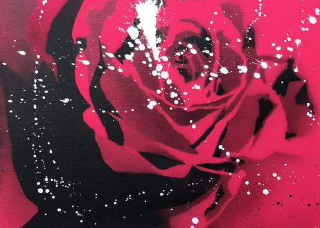 Paint Rose「上品」- Pink Splash