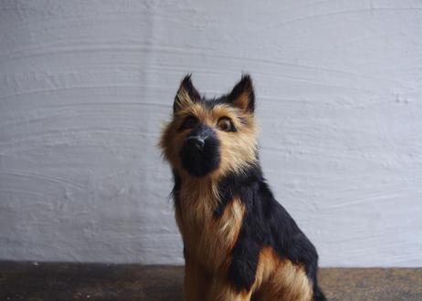 古物|かっこいい犬(シェパード?)