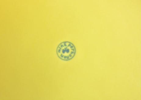 ミナ ペルホネン /  BP8012P こどものうつわ プレート イエロー