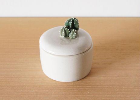 サボテンが生えた小物入れ cactus04
