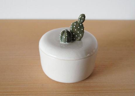 サボテンが生えた小物入れ cactus01
