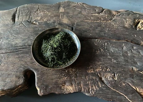2020熊本県産煎茶 生茶「大樹/DAIKI」50