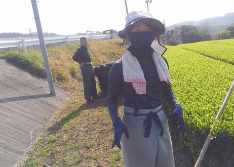 【2021新茶】香輝園/ユタカミドリ 芳醇~Houjun~