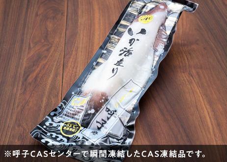 【テイクアウト】呼子剣先いか 活き造り(CAS凍結品)(M2サイズ)
