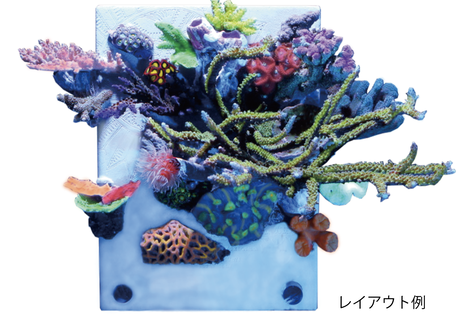 エバーキャンバス 【海水専用】ミニ