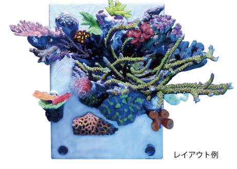 エバーキャンバス 【海水専用】スタンダード