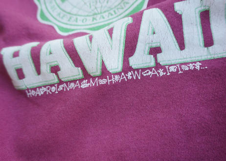 80's Hanes university Hawaii sweat shirt