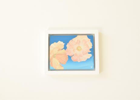 Bloom     No.19