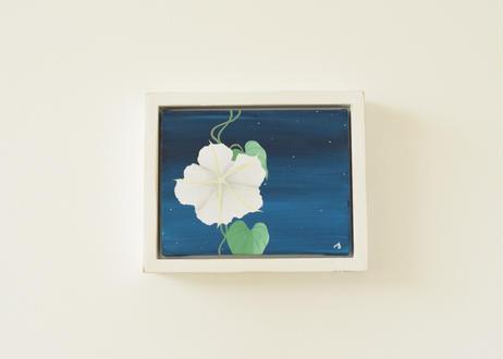 Moon flower    作品NO, 23