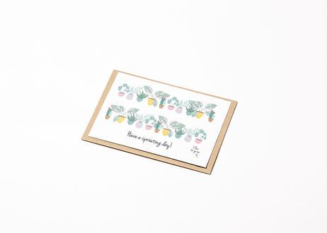 BLOOM POSTCARD - WILD FLOWER MIX