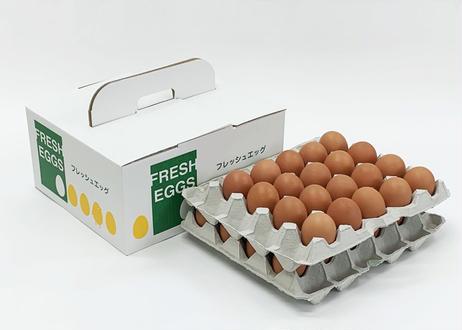 美黄卵赤玉 40個入り化粧ケース