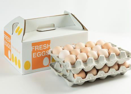 美黄卵さくら 30個入り化粧ケース