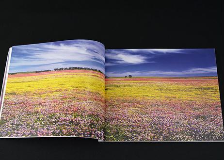 《送料込み》澤野新一朗 作品集 vol.1