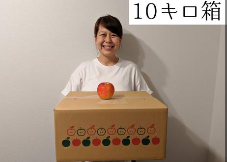 【新聞梱包】シナノスイート 規格外小玉 10キロ箱 (50玉くらい) 2