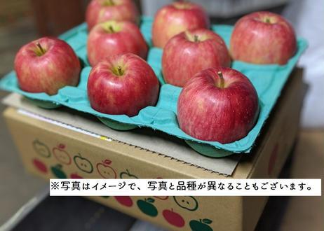 C7 シナノスイート 3キロ箱(7~12玉) 家庭用(訳あり) 2