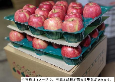 B9 秋映 10キロ箱 (24~46玉) 家庭用(訳あり)