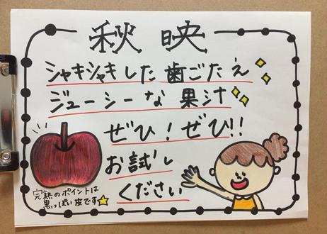 B8 秋映 5キロ箱(11~18玉) 家庭用(訳あり)
