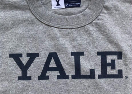 YALEグラフィックS/Stee ( WHITE/GRAY )