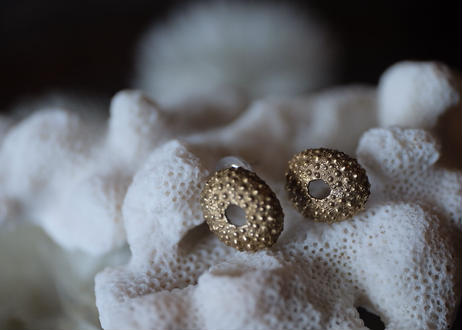 真鍮ウニ pierce