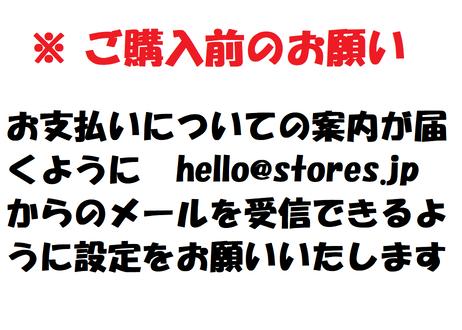 10th Anniversary ネオンカラー 防水ステッカー【白・黒2枚セット】