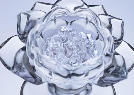 ロータスディッシュ 「蓮の花咲く 浄化キット」