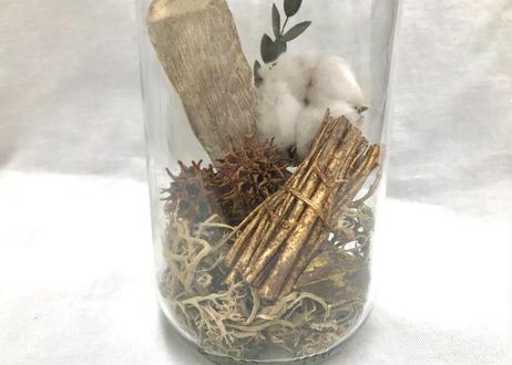 木の実の小瓶 Cotton (M)