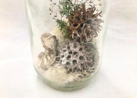 木の実の小瓶 Moss (S)