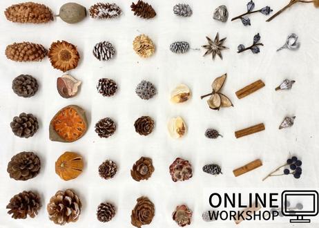 【オンライン】Workshop:木の実リース【 2021年10月30日 (土)】