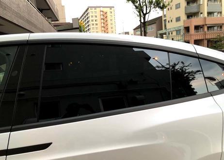クロムデリートシート1台分(model X)窓枠+ミラーステー