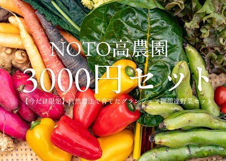 【今だけ限定】NOTO高農園 グランシェフ御用達の野菜セット 3000円セット(税込・送料別)