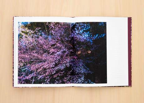 小林卓哉写真集『桜を結ぶ』