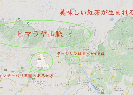 ジュンチヤバリ茶園 ヒマラヤン・インペリアルブラック(HIB 2020 Spring)
