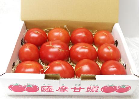 お徳用薩摩甘照(大玉トマト)