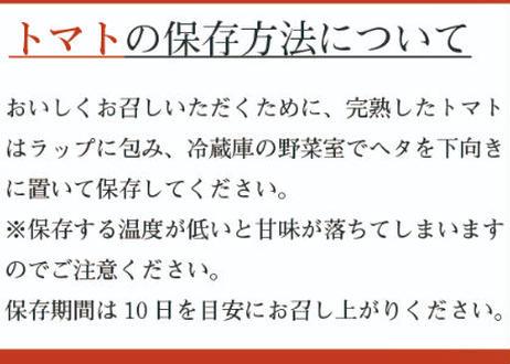薩摩甘照(大玉トマト)【2022年11月より順次発送予定】