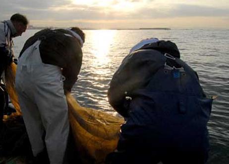 【北村水産】釜揚げしらすとしらすかまぼこセット(商品コード:TF130039)★しらす漁解禁! 入荷しました★