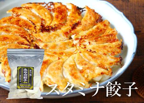 【みやの餃子】スタミナ餃子 ★にんにく入り★(冷凍)1袋24個入(商品コード:TF500349)
