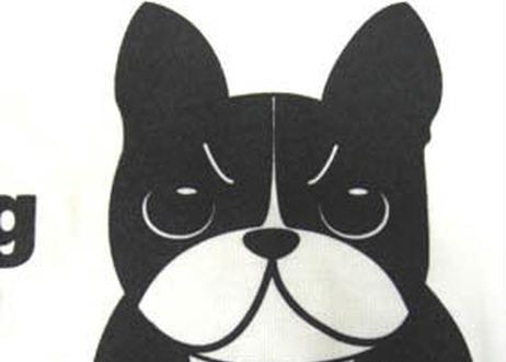 French Bulldog・ホワイト
