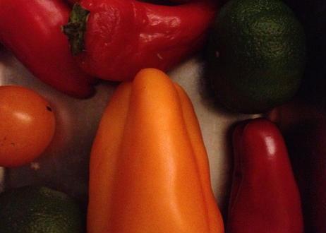 有機トマトソース (イタリアントマト100%使用)300g