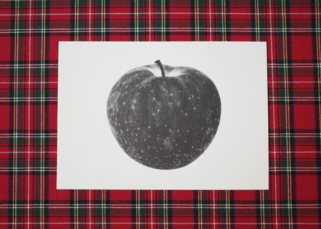 ポストカード / 2 pages book / Apple