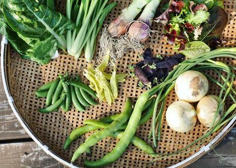 【定期便】よかちょろおまかせセット / 淡路島の旬の恵と食卓を彩る加工品