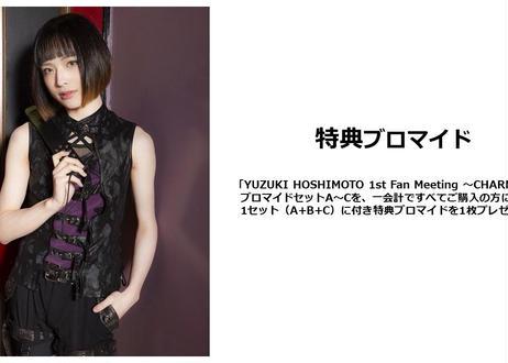 「YUZUKI HOSHIMOTO 1st Fan Meeting ~CHARME~」ブロマイドセット【C】