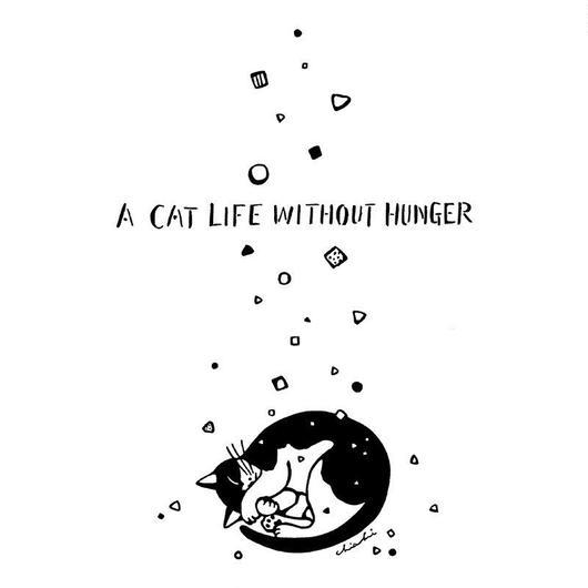 猫に降るカリカリ