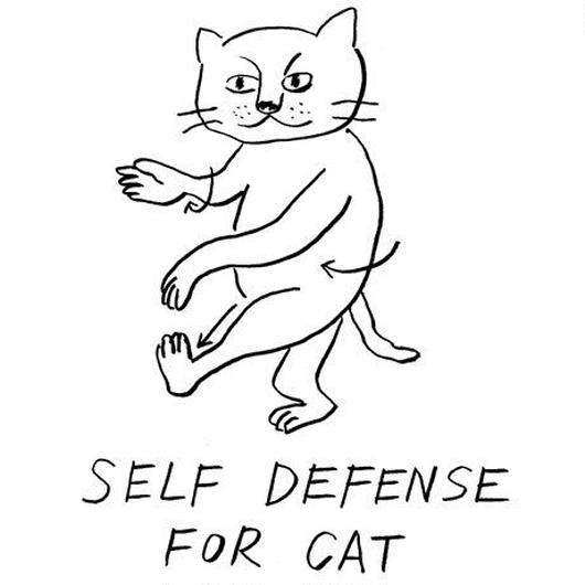 self defence for cat
