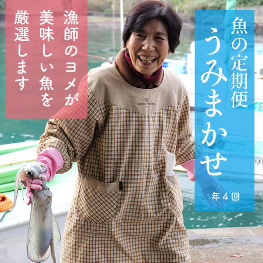 うみまかせ(年4回お届け)