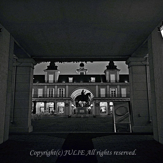 JULIE's Photo Monochrome-198