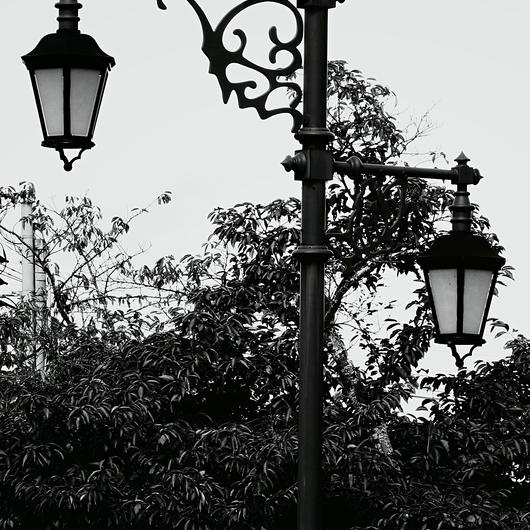 JULIE's Photo Monochrome-2