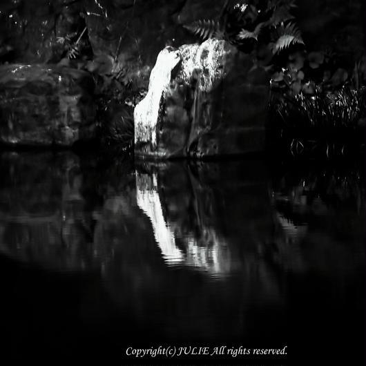 JULIE's Photo Monochrome-299