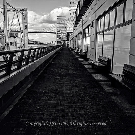 JULIE's Photo Monochrome-221