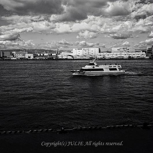 JULIE's Photo Monochrome-220