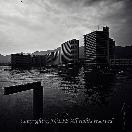 JULIE's Photo Monochrome-232